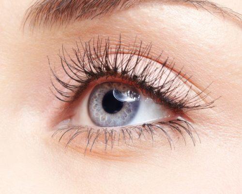 eyelash tinting albury thurgoona